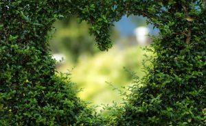 Green Valntine Tips