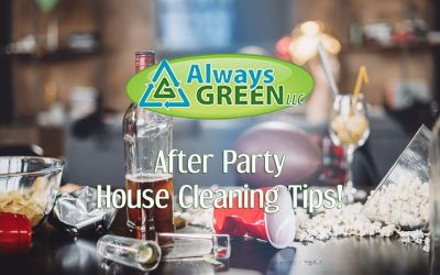 House Cleaning Tips After A Party