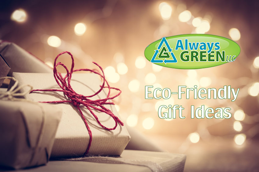 Eco-Friendly Gift Ideas for the Holidays!