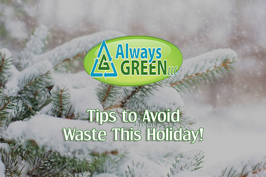 Tips to Avoid Waste This Holiday!