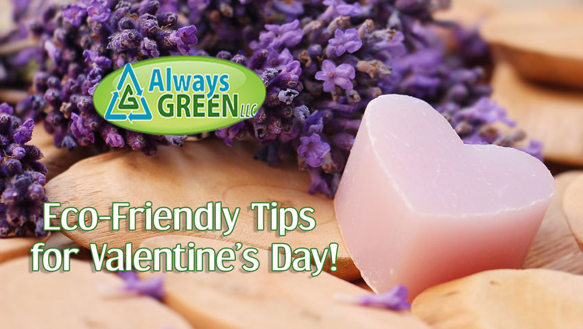 Eco-Friendly Gift Ideas and Tips This Valentine's Day